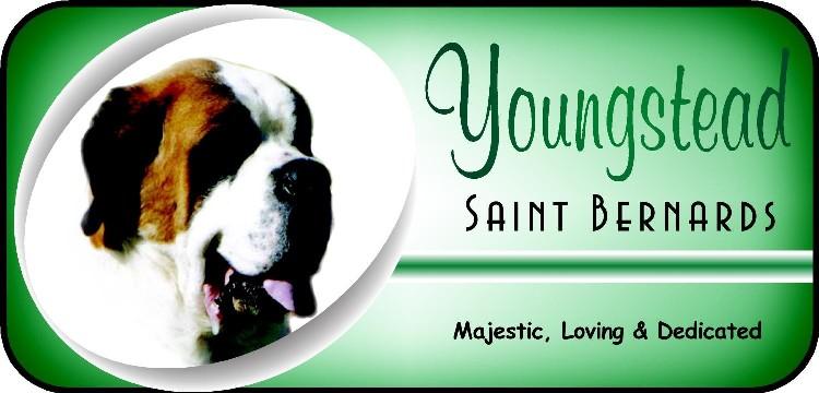 Youngstead St Bernard Logo