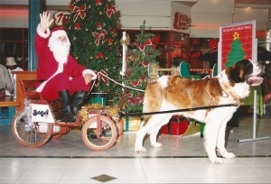Christmas Promotions, Balu and Father Christmas
